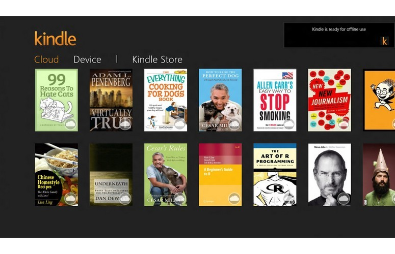 kindle-screen_win8